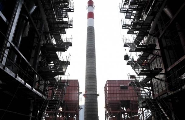 Почти 5,5 тысяч петербуржцев подписались против строительства мусоросжигающих заводов