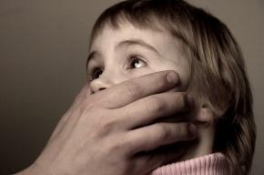 Педофил знакомился с матерями-одиночками ради их детей