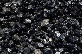 Украина частично возобновила закупки угля в России