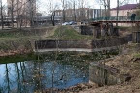 Роспотребнадзор исследует воду и берега бесхозного Малоневского канала