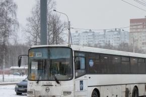В Невском районе задержали водителя неисправной маршрутки