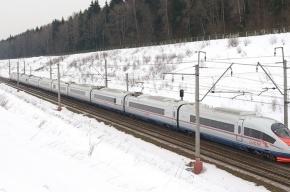 За пять лет работы поезда «Сапсаны» перевезли 11 млн пассажиров