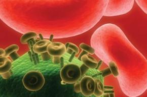 Ученые Петербурга изобрели вакцину для борьбы со СПИДом