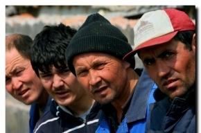 Петербуржец зарегистрировал 27 мигрантов в своей квартире