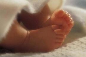 Труп новорожденного ребенка нашли на Васильевском острове