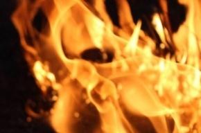 В квартире на улице Жуковского загорелась стиральная машина