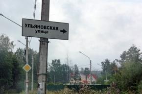 Правительство Петербурга выставило на торги 3 га в Петергофе под многоквартирные дома
