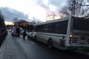 В пригороде Петербурга легковушка протаранила автобус