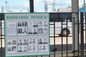 Правительство Петербурга повысит эффективность поиска пропавших без вести петербуржцев