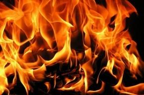 В Кронштадте потушили крупный пожар