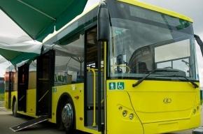 50 новых автобусов выйдут на улицы Петербурга