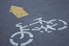 16 велосипедных маршрутов могут появиться в Санкт-Петербурге