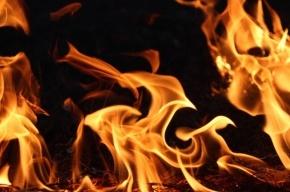 На улице Розенштейна горел расселенный дом