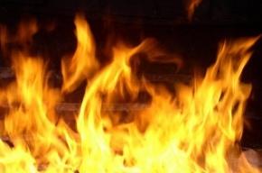 На Гаванской улице горела двухкомнатная квартира