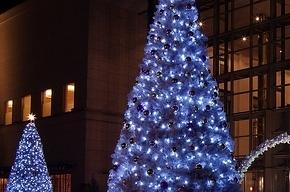 Петербург готовится к Новому году