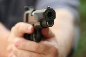 В Петербурге мигрант с пистолетом пытался ограбить водителя маршрутки