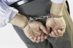 В Красногвардейском районе Петербурга задержан подозреваемый в насилии над 4-х летним ребенком