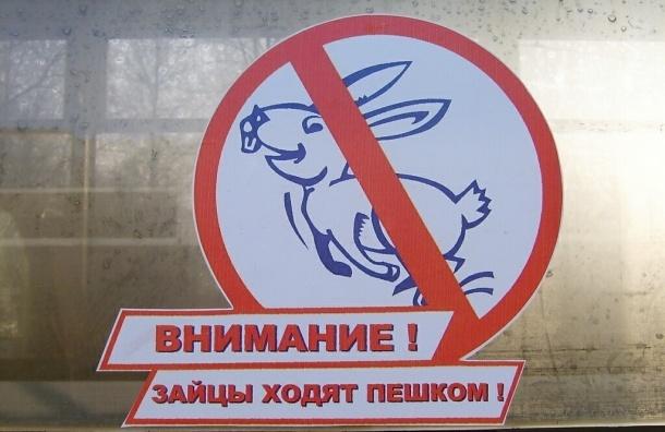 Штраф для «зайцев» в электричках вырастет до 100 рублей