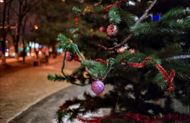 В Госдуме предлагают сократить новогодние праздники до четырех дней