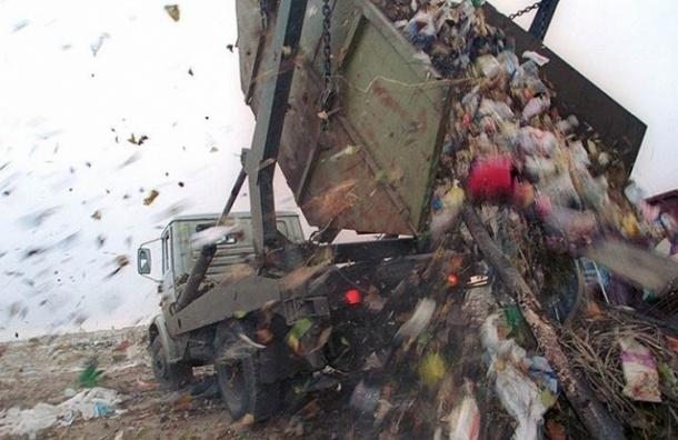 Строительство мусороперерабатывающего завода в Левашово отложили