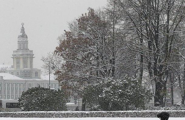 Вечер субботы в Петербурге начнется со снегопада