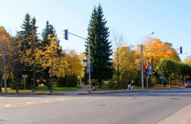 Территорию исторического сквера в Пушкине могут застроить