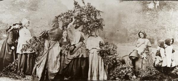 Фотографии Викторианской эпохи_Робинсон Генри Пич_Приход мая_1862