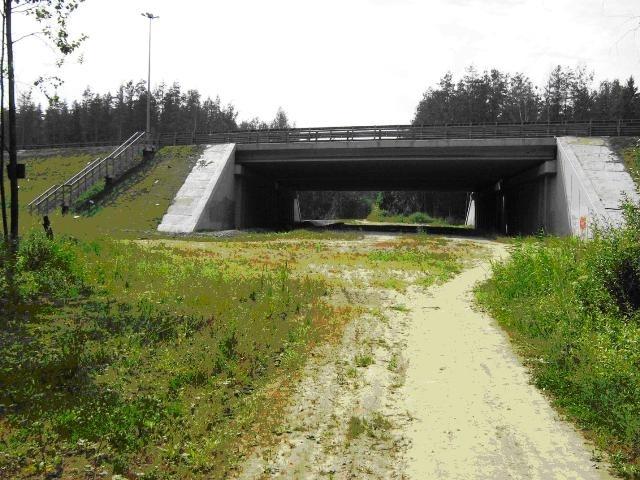 Проход под КАД в районе Ржевского лесопарка, активно используемый пешеходами, велосипедистами, лыжниками и дикими животными. Предлагается сделать примерно такой же на участке между Горской и ЗСД.