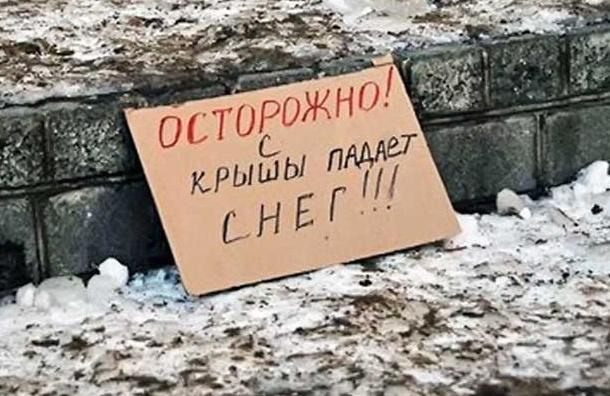 Прокуратура накажет жилищников Василеостровского района за некачественную уборку