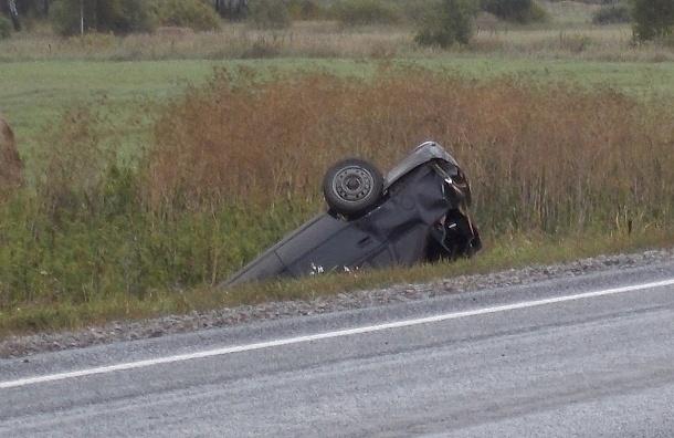Водителей может ждать 20 лет лишения прав в случае «пьяной езды»