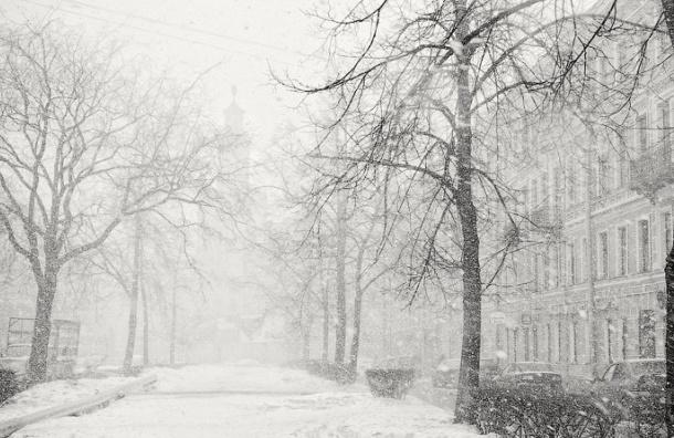 В ближайшие дни в Петербурге ожидается метель