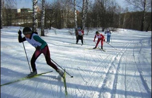 В Муринском парке создадут лыжно-биатлонную трассу