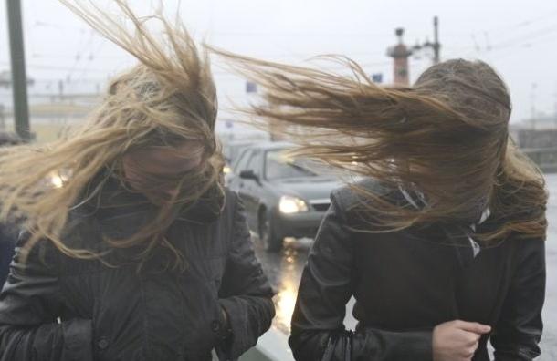 МЧС: В Петербурге ожидается сильный ветер