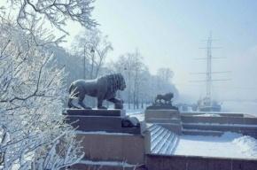 После Рождества в Петербург придет оттепель