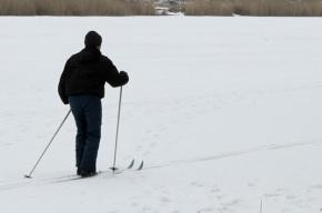 В Сестрорецке под лед провалился лыжник