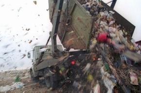 Строительство опасного завода в Левашово отложили