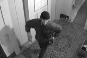 Житель Петербурга, жестоко избивший пенсионерку в Купчино, изобличён в аналогичных преступлениях