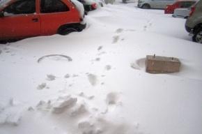 Прокуратура вынесла представление администрации Кронштадта за горы снега и наледь