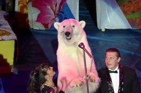 30 января 2015 года в «Цирке в Автово» состоится  пресс-показ нового циркового шоу  «Большой цирк с белыми медведями»