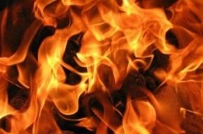 Строительный вагончик сгорел на проспекте Непокоренных