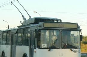 Петербургский зацепер укусил водителя троллейбуса