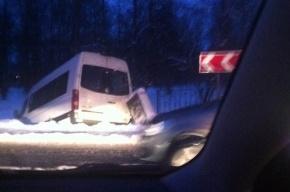 В Пушкине микроавтобус, проломив ограду, въехал в Екатерининский парк