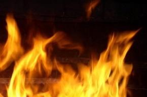 За ночь в Ленинградской области произошло три серьезных пожара