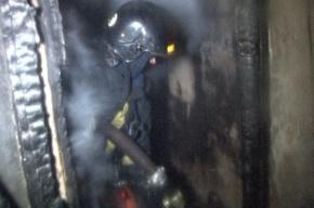 13  человек эвакуированы из горящего дома в Петроградском районе