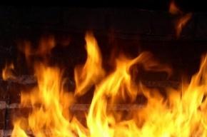В Горелово сгорели две иномарки