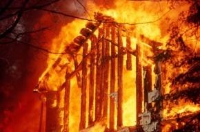 7 раз пожарные выезжали на экстренные вызовы в Петербурге