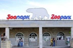 Ленинградский зоопарк отмечает 150-летний юбилей