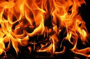 15 человек были эвакуированы из горящего здания на улице Лени Голикова