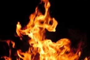 На улице Огнева выгорела однокомнатная квартира