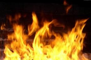 15 человек эвакуировано из-за пожара на Наставников